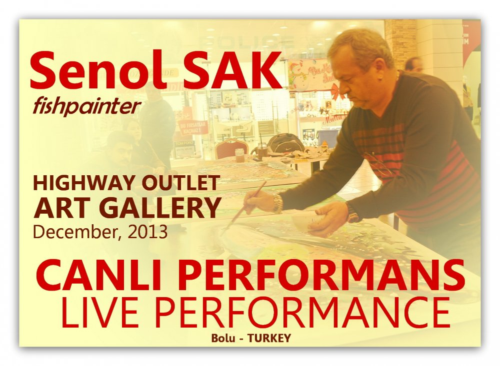 BALIK RESSAMI ŞENOL SAK İLE CANLI PERFORMANS, Bolu-HIGHWAY OUTLET, 2013